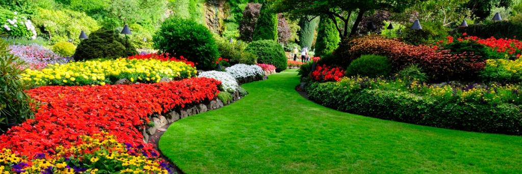 empresa de jardines malaga mantenimiento de jardines